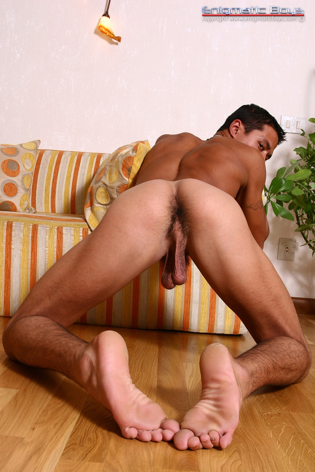 Arabic young gays first of all he039s cute 4