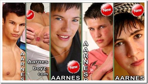 aarnes