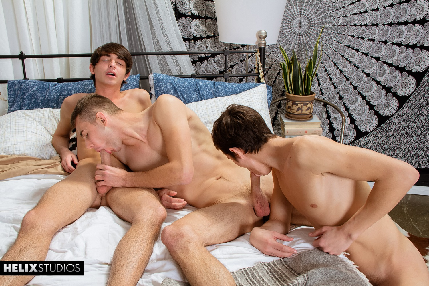 Gay Sex Three Some