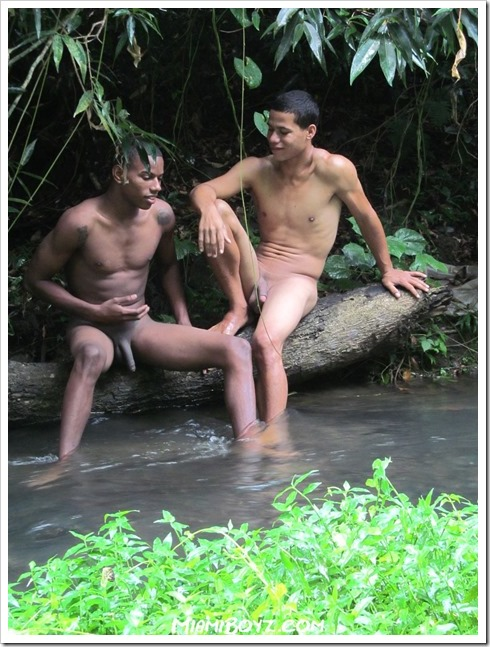 Gay-sex-in-the-wilderness (1)